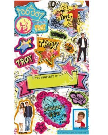 TROY (Zac Efron) Sticker Sheet