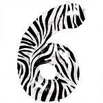 Zebra Print Number 6 balloon EACH (uninflated)