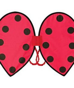 Children's Ladybird Wings