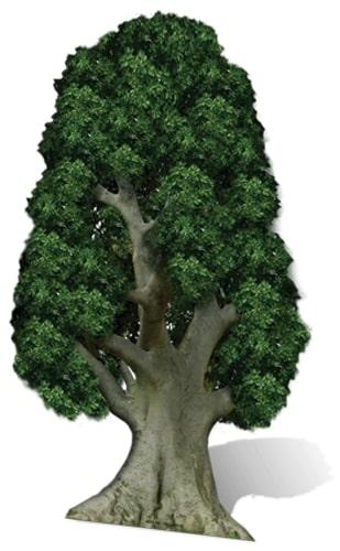 Tree Cardboard Cutout