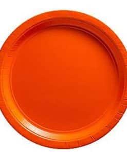 Orange Party Paper Plates