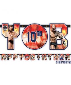 WWE Wrestling Happy Birthday Banner