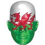 Welsh Flag Mask - each