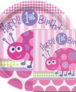 1st Birthday Girl Pink Lady Bug