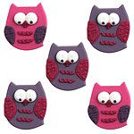 Owls Themed Party Cake Topers (Pk 5)