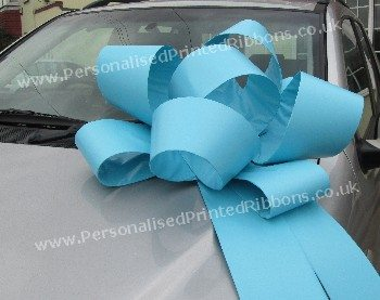 Turquoise Big Rosette Bow