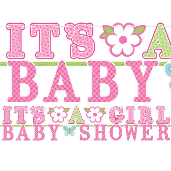 Welcome baby girl party banner fun party supplies for Welcome home new baby decorations