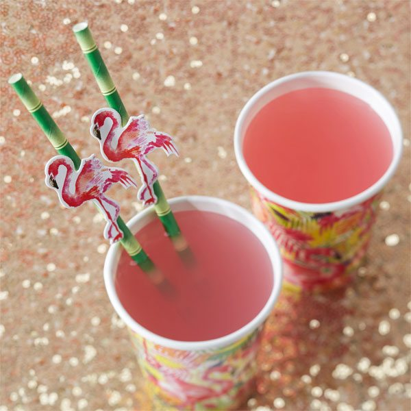 Flamingo Fun Party Straws