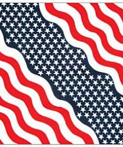 USA American Bandana
