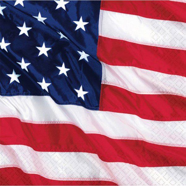 USA American Flag Luncheon Paper Napkins