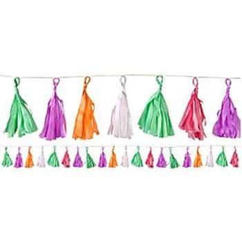 Coloured Tassel Garland Decoration
