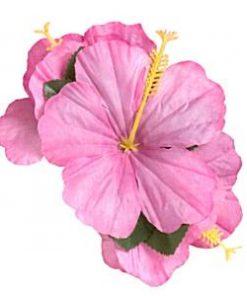 Summer Pink Hair-Clip