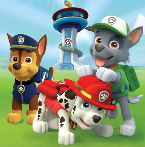 buy paw patrol party supplies fun party supplies