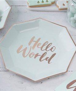 Hello World Baby