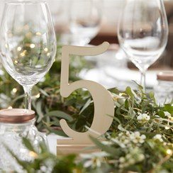 Wedding Beautiful Botanics Wooden Table Numbers