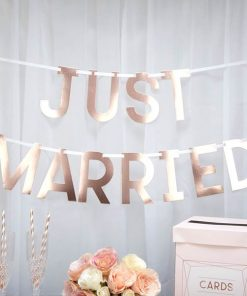 Geo Blush Wedding 'Just Married' Wedding Bunting