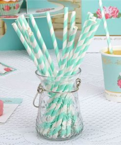 Eternal Rose Tea Party Turquoise Stripe Paper Straws