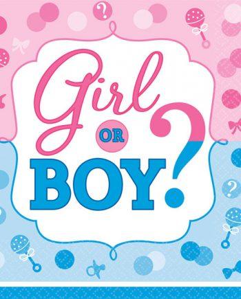 Gender Reveal Party Paper Napkins