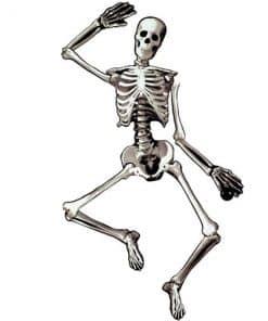 Halloween Jointed Card Skeleton
