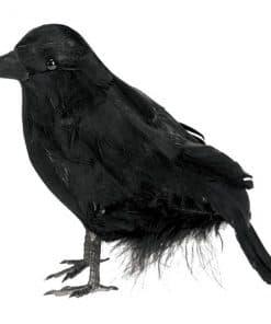 Halloween Small Feathered Raven