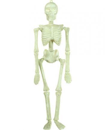 Halloween Glow in the Dark Hanging Skeleton
