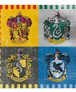 Harry Potter Party Beverage Napkins