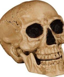 Halloween Props Skull