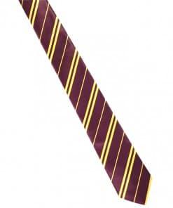 Harry Potter Party Wizard School Tie