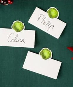 Botanical Sprout Party Place Cards