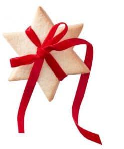 Merry & Bright Red Velvet Ribbon