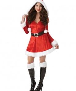 Sassy Sexy Santa Costume