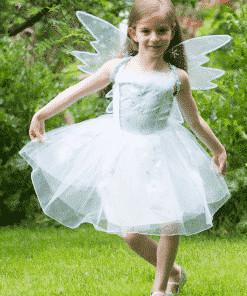 Frozen Fairy Costume