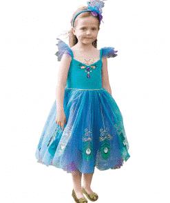 Peacock Fairy Costume
