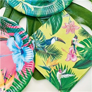 Tropical Fiesta Party