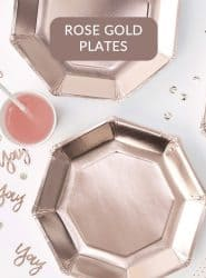 CHEAP ROSE GOLD DISPOABLE PARTY PLATES IN STOCK