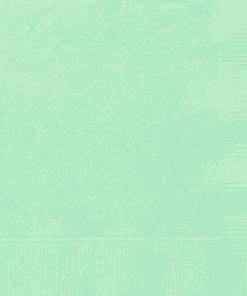 Mint Party Paper Napkins