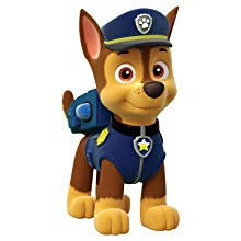 Shop Paw Patrol Party