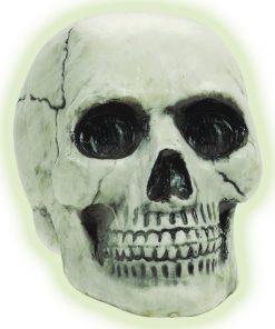 Halloween Glow In The Dark Skull