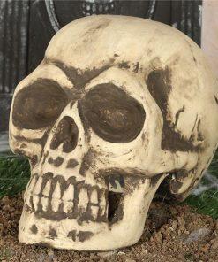 Large Foam Skull