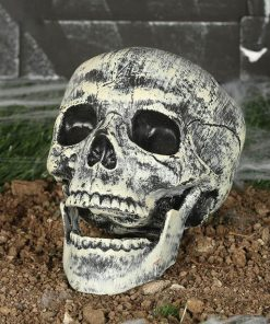 Halloween Plastic Skull