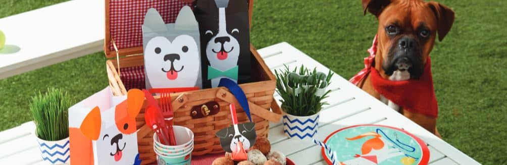 Dog themed Party Decorations & Ideas Next Day Delivery