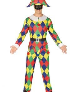 Harlequin Adult Costume