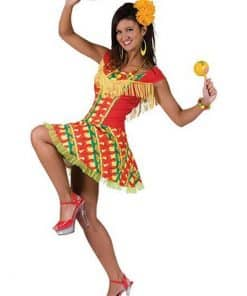 Mexican Lady Dress Adult Costume