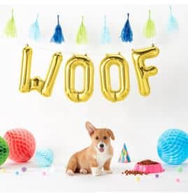 Gold Woof Foil Balloon Kit