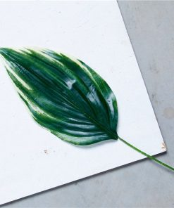 Hosta Leaf Decoration