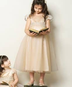 Belle Smock Party Dress Toddler and Child Costume