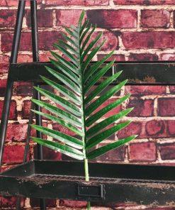 Fern Palm Green Leaf Decoration