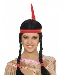 Native American Braided Wig with Feather