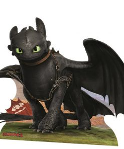 How To Train Your Dragon Toothless Cardboard Cutout