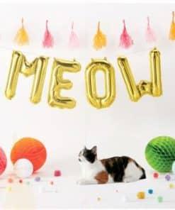 Gold Meow Foil Balloon Kit